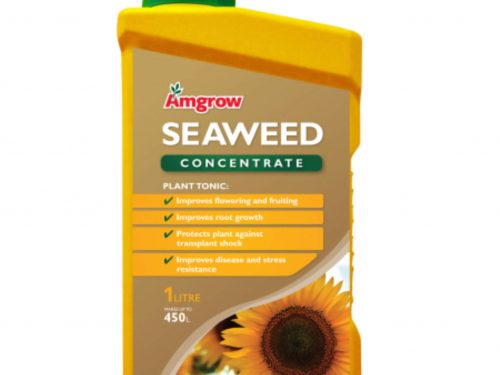Amgrow Seaweed concentrate 1 litre